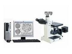 铸造金相分析仪