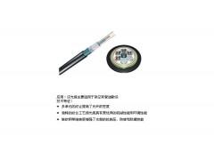 供应江西普天24芯层绞式室外单模光缆