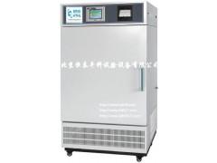 YP-250GSP药品综合稳定性试验箱