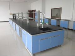四川食品厂洁净厂房建设|无菌室建设|实验室家具通风柜