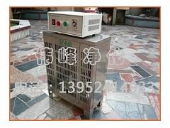 内置式臭氧发生器 挂壁式臭氧 臭氧厂家