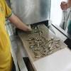 海鱼微波烘干设备